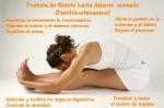 La edad se mide por la flexibilidad de la columna, por lo tanto para conservarte joven, permanece flexible. -Yogi Bhajan-